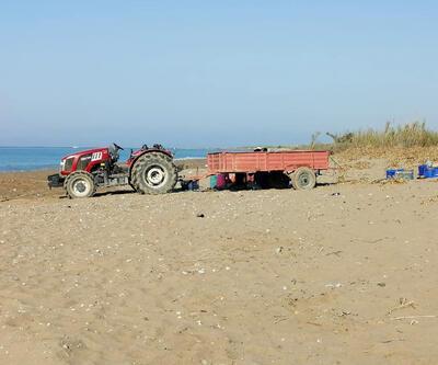 Caretta caretta sahiline traktörle girdi