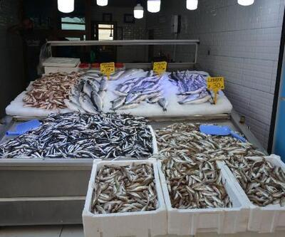 Sinop'ta balık azlığı fiyatlara yansıdı