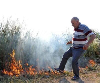 Sazlık alanda yangın