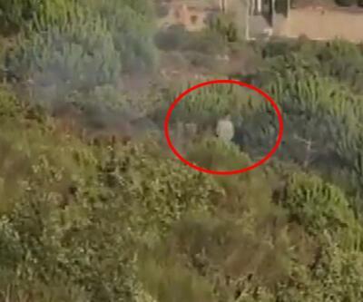 Bakan Pakdemirli: Pendik'deki orman yangınında terör bağlantısı tespit ettik