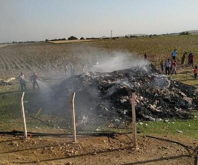 Şanlıurfa'da 12 ton pamuk yandı