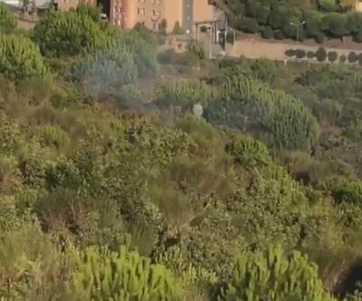 Kurtköy'deki orman yangınıyla ilgili yeni gelişme