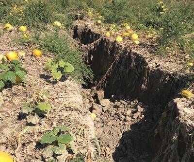 Tarım arazisinde korkutan yarıklar oluştu