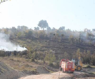 Balıkesir'de makilik alanda çıkan yangında 15 dekarlık alan zarar gördü