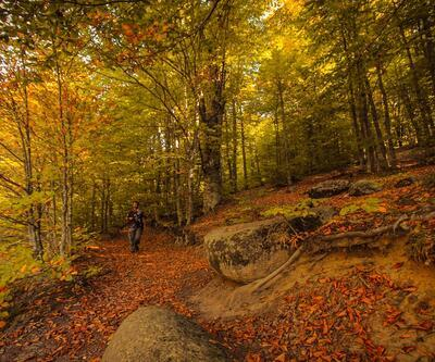 Domaniç Dağları'nda sonbaharın ilk renkleri