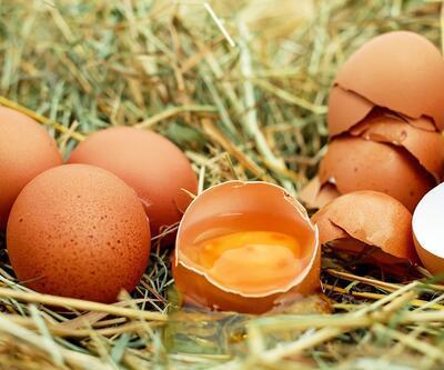 Günde 2 yumurta yerseniz... Vücuda etkisi inanılmaz!