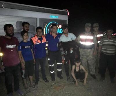 Kayalıklarda sıkışan keçi, AFAD ekiplerince kurtarıldı