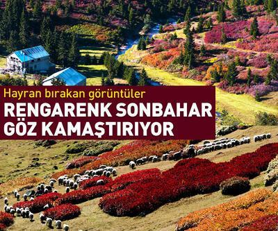 Karadeniz'de sonbahar güzelliği göz kamaştırıyor