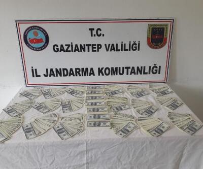 Gaziantep'te sahte dolara: 2 gözaltı