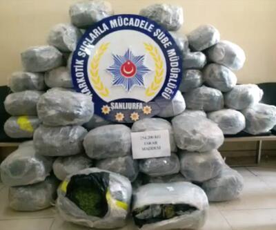 Şanlıurfa'da 254 kilogram esrar ele geçirildi