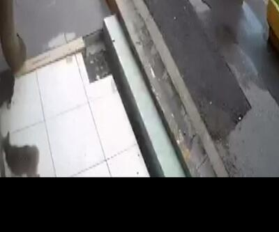 Eyüpsultan'da bir kedinin başı kepenge sıkıştı