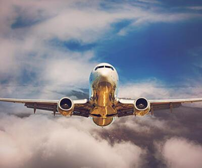 Dev hava yolu şirketi satılıyor