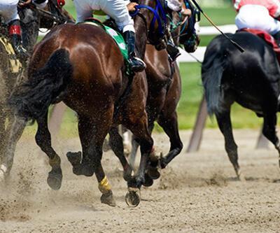 Türkiye Varlık Fonu'ndan at yarışları ve bahisleri adımı