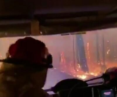 Avustralya'da yangın