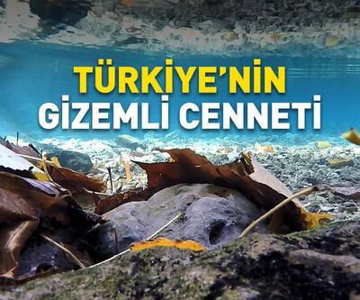 Türkiye'nin gizemli cenneti: Yeşilgöz