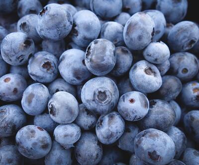 Bu besinler hafızayı yeniliyor!