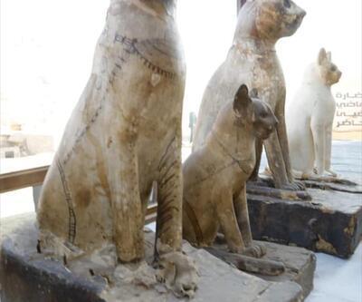 Mısır'da kedi heykelleri ve mumyaları bulundu