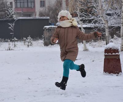 Doğu illeri kar yağışına teslim oldu
