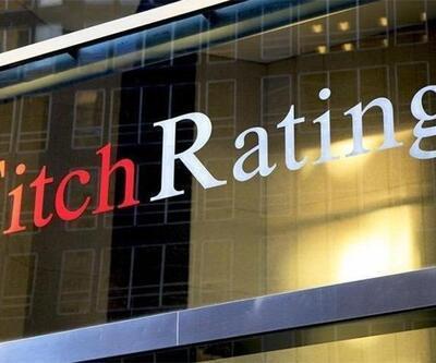 Fitch Ratings: Türkiye 2020'de daha fazla istikrar kazanacak