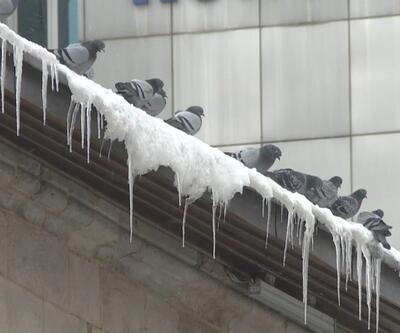 Doğu'da kar ve soğuk etkili