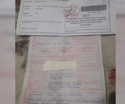 Karayoluna çıkan ineğin sahibine 108 lira ceza
