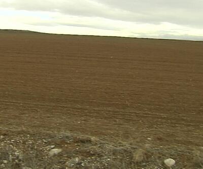 Arazi dağıtım projesi sürüyor