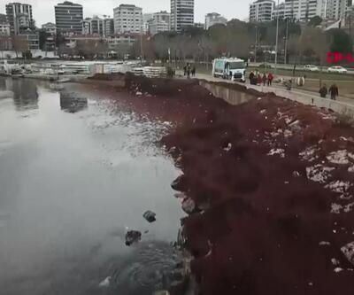 Caddebostan kırmızıya boyandı
