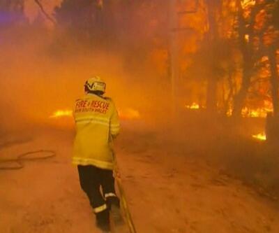 Avustralya'daki yangın neden söndürülemiyor? Uzman isim canlı yayında anlattı