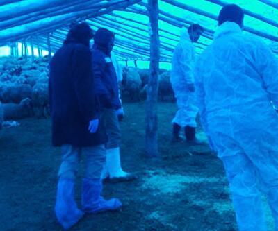Çiçek hastalığı yüzünden köy karantinaya alındı