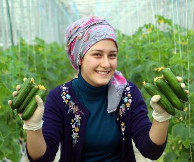 -23 derecede domates ve salatalık yetiştiriyorlar