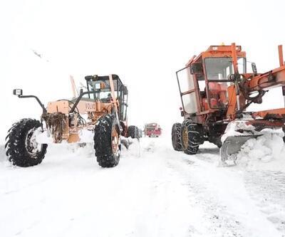 Şırnak'ın kar kaplanları