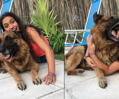Fotoğraf çektirmek istediği köpek yüzünü ısırdı