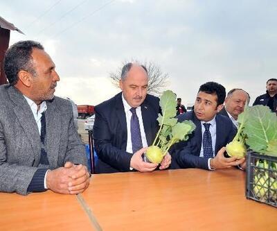 Vali Coşkun'dan turp işçileri ve turp üreticilerine ziyaret