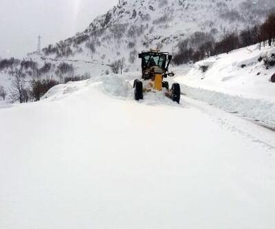 Bingöl'de 252 köy yolu, kardan kapandı