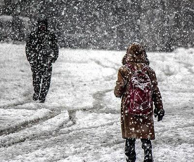 12 ilde eğitime kar tatili (12 Şubat Çarşamba günü hangi illerde okullar tatil edildi?)