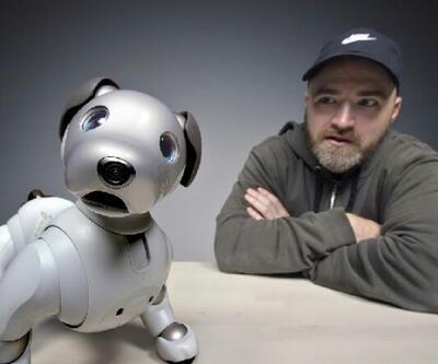 Robot evcil hayvanlar yapay zeka teknolojisi ile donatılacak