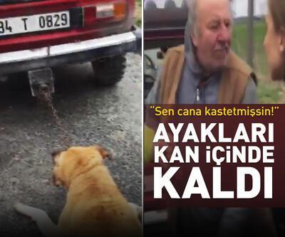 Köpeği aracın arkasında sürükledi