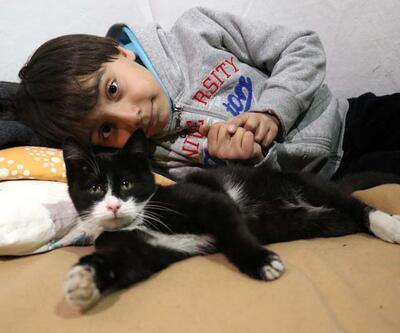 Depremde kedisini kaybeden 8 yaşındaki Muhammed'e jandarmadan sürpriz