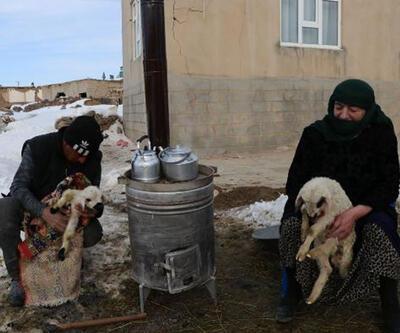 Sobayla hayvanları ısıtmaya çalıştılar
