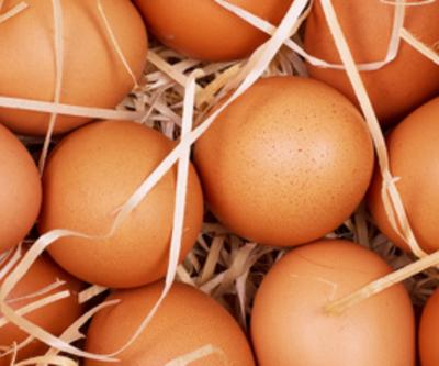 30 yıllık araştırma sonucu açıklandı!Yumurtakalp krizine neden olur mu?