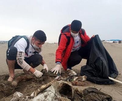 Harbiş Sahili'nde 2 ton atık toplandı