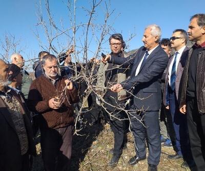 Çiftçilere, meyve ağaçlarında budama eğitimi verildi