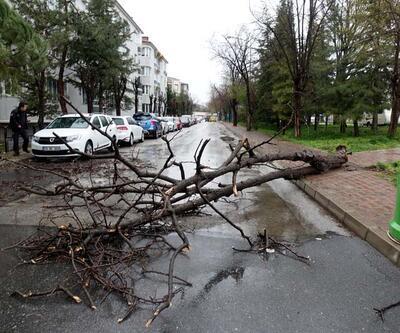 'Turuncu' uyarı sonrası ağaçlar devrildi, çatı uçtu
