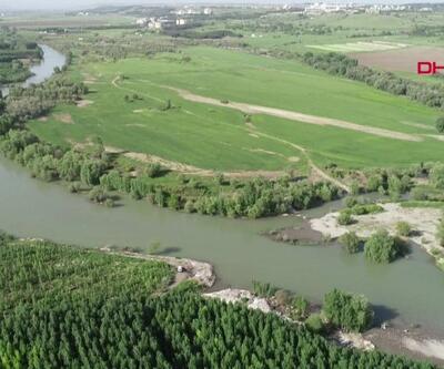 Dicle Nehri'nde kimyasal tehdidi