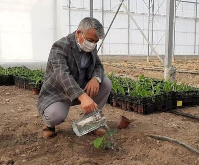 Kaymakam Yiğit'ten çiftçilere ziyaret