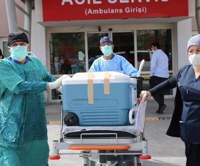 Organlarıyla 7 hastaya umut oldu