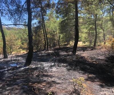 Sprey şişelerini ateşe verince ormanı yaktı