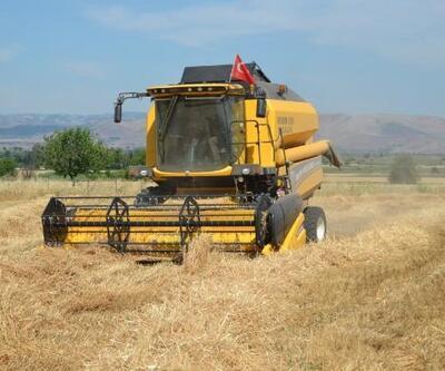 Hassa'da buğday hasadı başladı