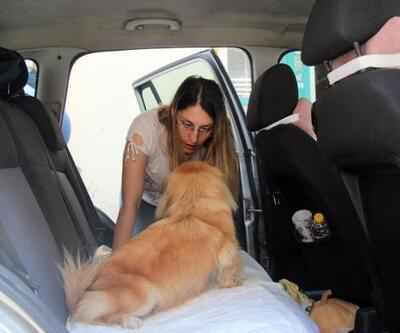Sıcak havada araçta bırakılan köpek kurtarıldı