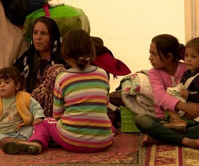 Göç Filmleri Festivali başlıyor | Video